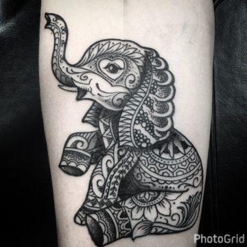 Mandala (elephant) -Juliano-16