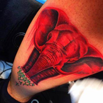 Color Work Tattoo Elephant